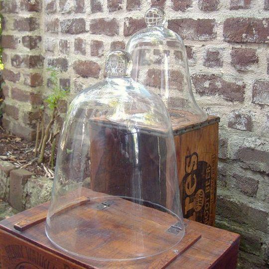 vintage & antique glass cloche