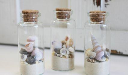 California Seashell Company 1