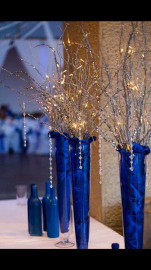Wedding perfect event rentals appleton wi weddingwire 800x800 1481744195215 silver branches junglespirit Images