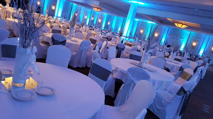 Wedding perfect event rentals appleton wi weddingwire 800x800 1481744195215 silver branches 800x800 1481745502039 paper valley secura party junglespirit Choice Image
