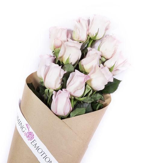 Light Pink Elegant Luxury Wedding Roses