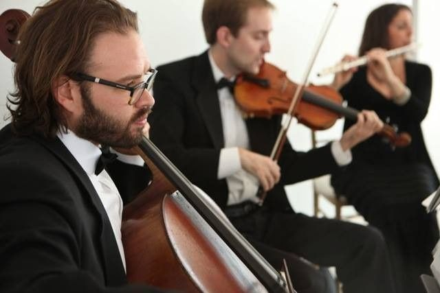 Tmx 1437375381857 Wedding Ceremony Music Studio 450 Ny Princeton wedding ceremonymusic