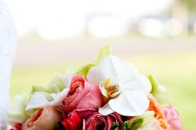 Palmer Flowers