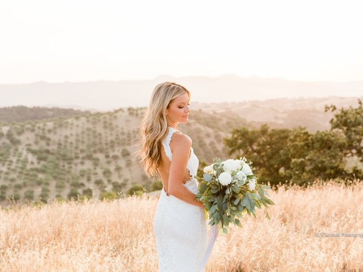 Tmx Christimilesweddingrdjcheetahcheetahphotographysanluisobispocaadelaidavineyards1962 2 Jpgpswm 51 178004 159623441065319 San Luis Obispo, CA wedding photography
