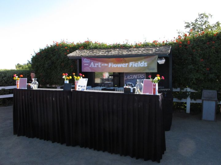 carlsbad flower fields double length 01