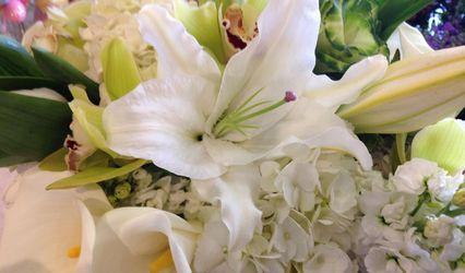 CC Fine Florals 1