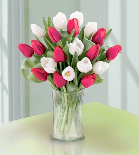 Tmx 1340214856760 200632876568616327865214n Columbus wedding florist