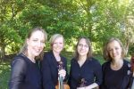 The Southern Maryland String Quartet image