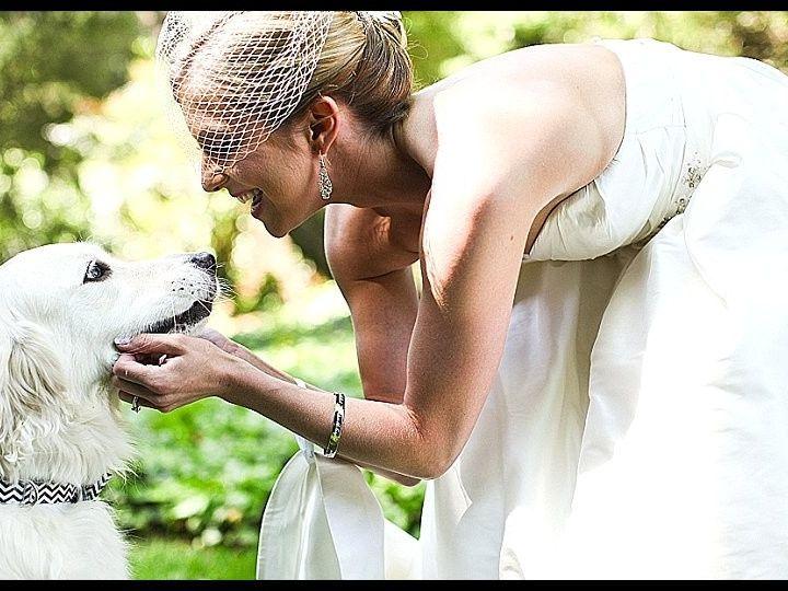 Tmx 1377790508880 2013 08 190004 Rock Hill wedding planner
