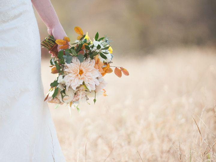 Tmx 1506089644596 Jl 0343 Charlottesville, VA wedding planner