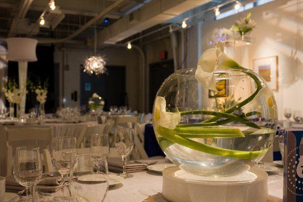 Tmx 1263331163182 IMG4049 Reading, Pennsylvania wedding venue