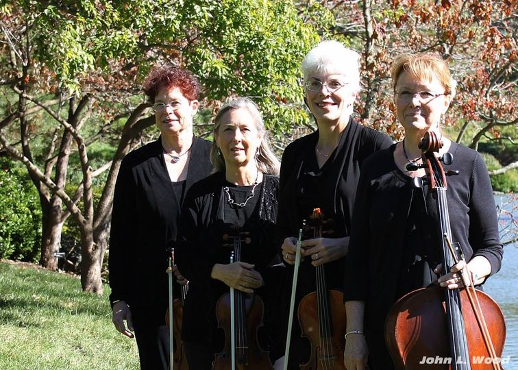 Heritage String Quartet - Ceremony Music - Saint Louis, MO - WeddingWire