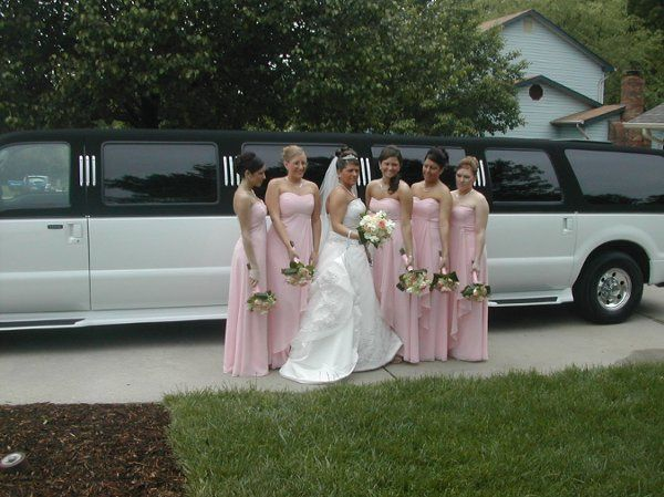Bride and bridesmaids by the limo