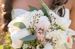 Sun Flowers Florist Hatteras
