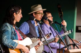 Lost Pines Bluegrass and Bouquet Bands