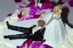 PARADISE Bridals & Tuxedos image