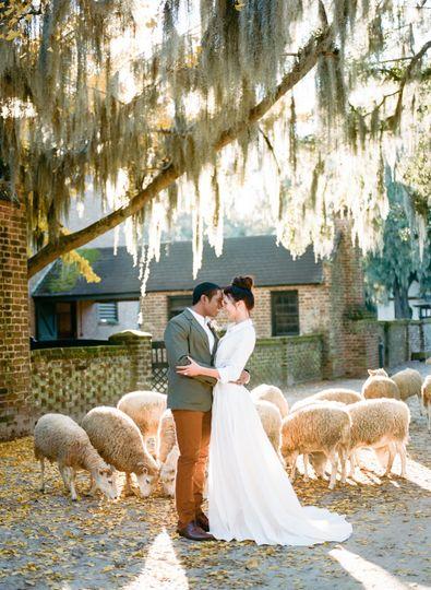 st louis wedding photographer 5 51 171904 158316795282038