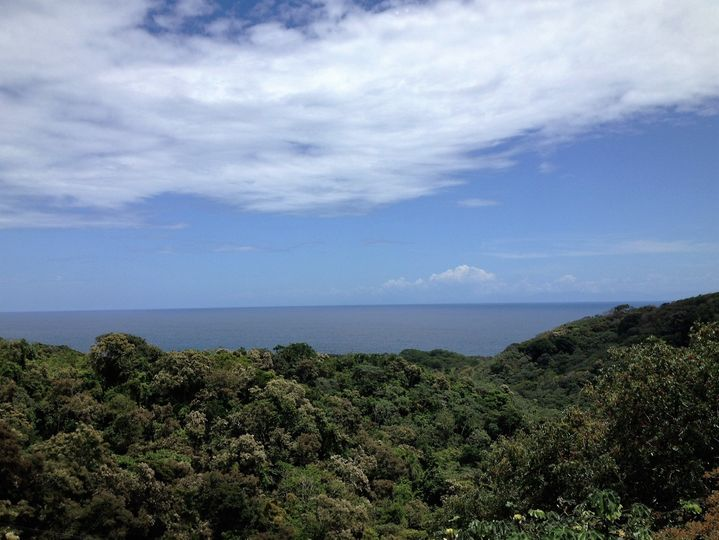 The view prior to zip lining in Roatan