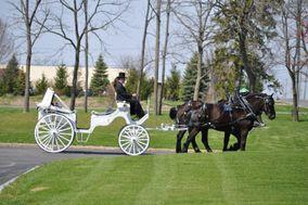 Hemlock Hidden Hames- horse carriage