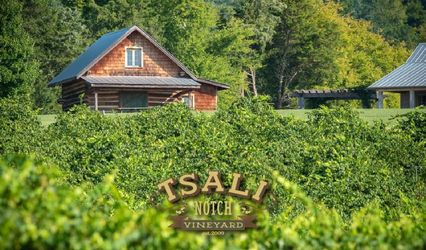 Tsali Notch Vineyard