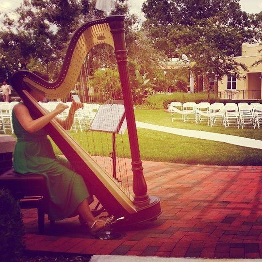 harpistinlakelandflorida
