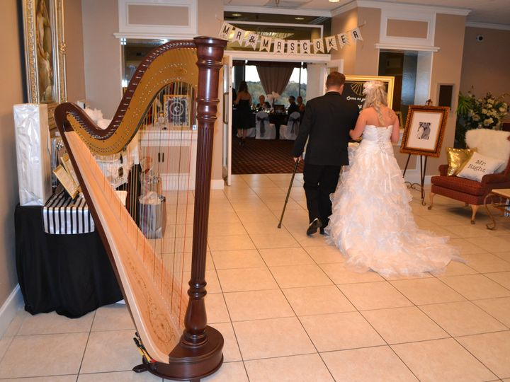 Tmx 1417478047429 Wedding Harpist In Winter Haven Tampa wedding ceremonymusic