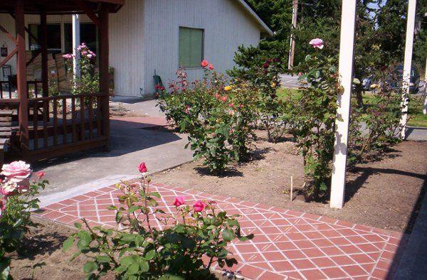 Our rose garden near our Gazebo