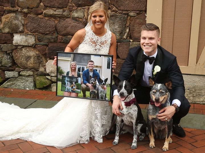 Tmx Dog 2 51 572114 160529136031236 Mount Holly, New Jersey wedding videography