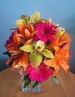 Bright collection of cymbidium orchids, gerbera daisies and Asiatic lilies in a square vase