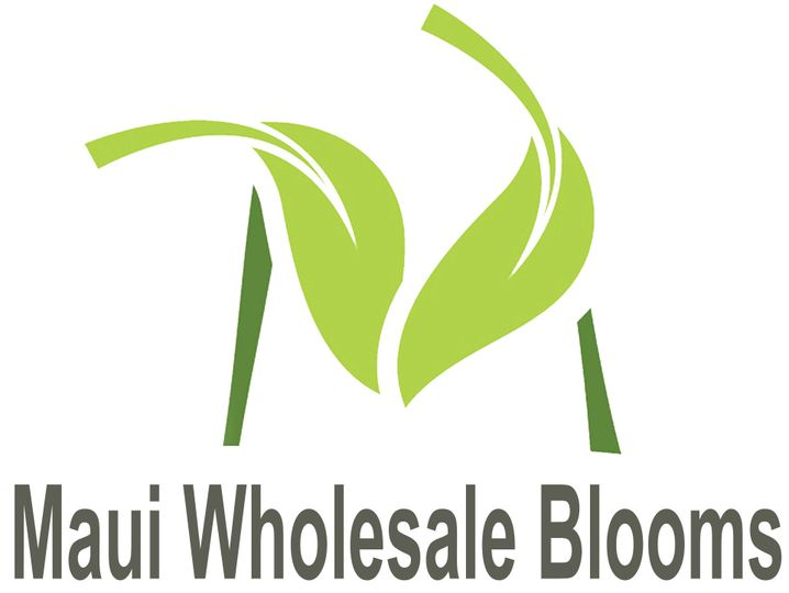 5904f6d5124ba2dd logo maui wholesale blooms header