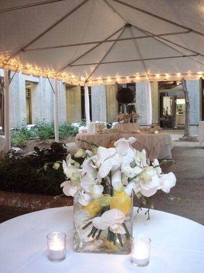 Wedding at Parizade