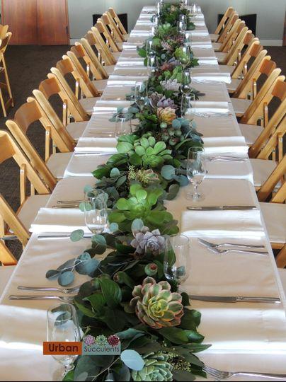 Succulent Table Runner