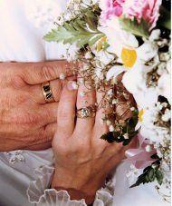 Tmx 1317679514876 Toni4 Saint Clair Shores wedding officiant