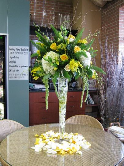 Metropolitan Plant & Flower
