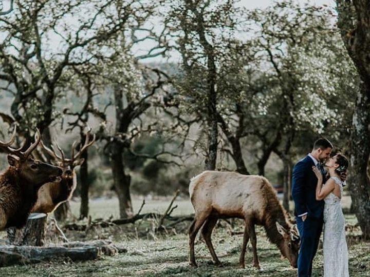 Tmx Elk 51 437514 160636093296187 Colorado Springs, CO wedding planner