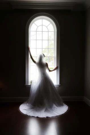 Tmx 1286861229733 Elizabethwindowsilhouette Charlottesville wedding photography