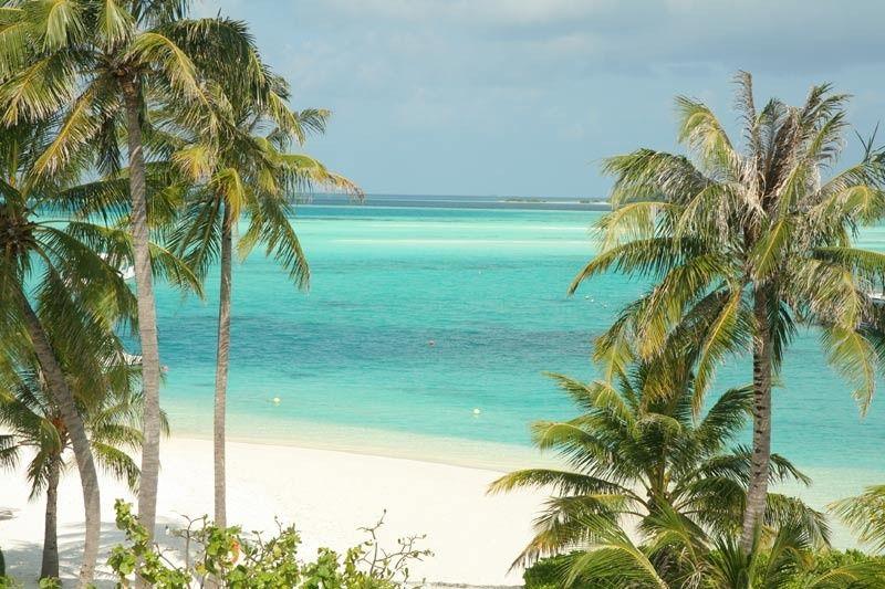maldives shot