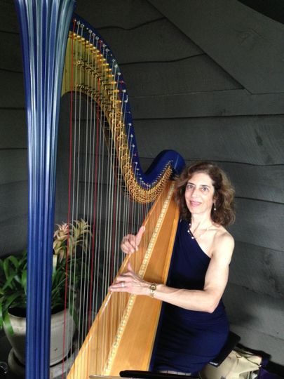Harpnotes