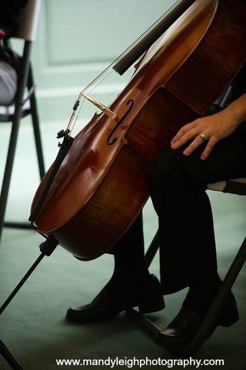 cello mandy leigh photography