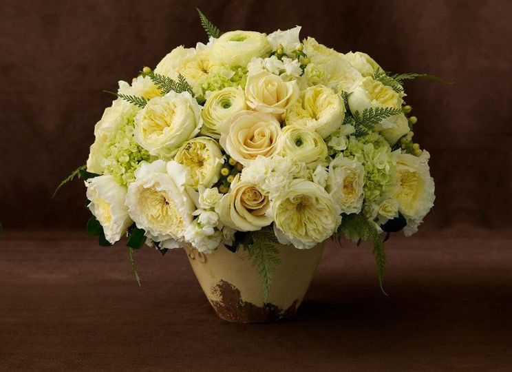 floral citrus 1