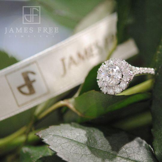 Amavida Diamond Engagement Ring, James Free Jewelers