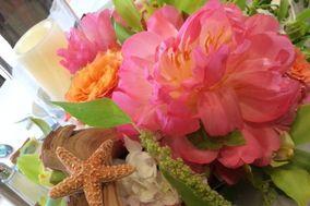 Spinning WEB Florist