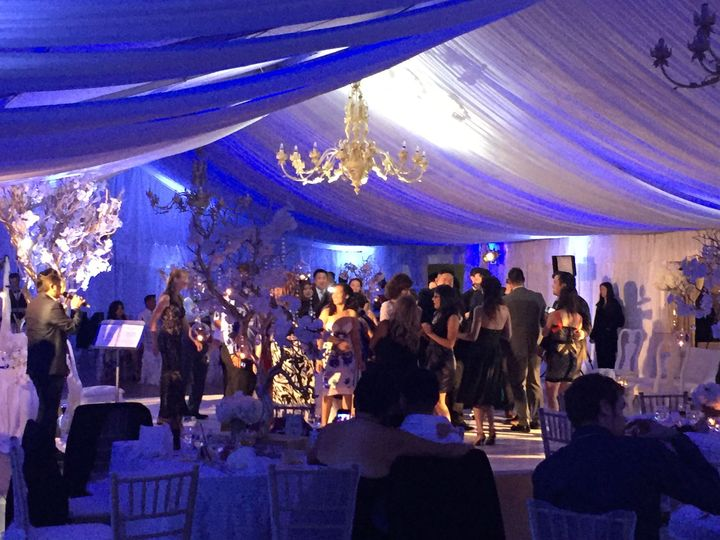 Classy and Elegant at Grand Island Mansion with DYNAMIKsoundz DJ and Lighting