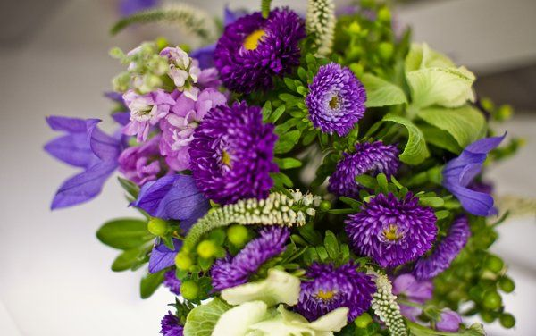Tmx 1265819538702 Meredith04 Sherman wedding florist
