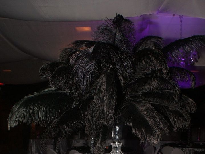 Tmx 1359567870235 Blackostrichplume Belvidere wedding rental