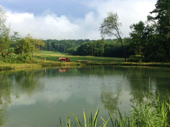 The pond on the farm