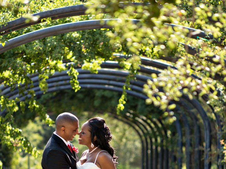 Tmx 1509376049024 Rossjonessbgphotography20130803rossjones01430low Sunland, CA wedding florist