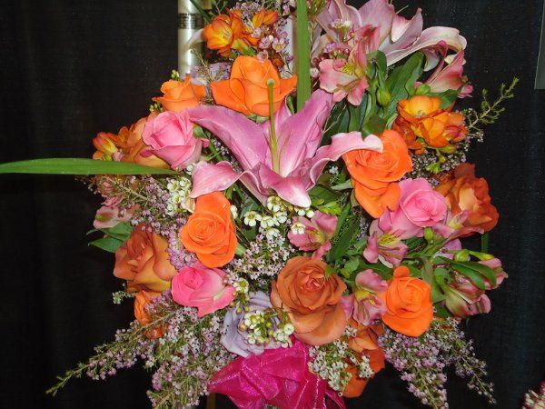 Pinks and oranges