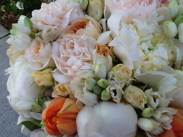 Tmx 1426354792626 Ipad Pictures 712 Woodland, California wedding florist
