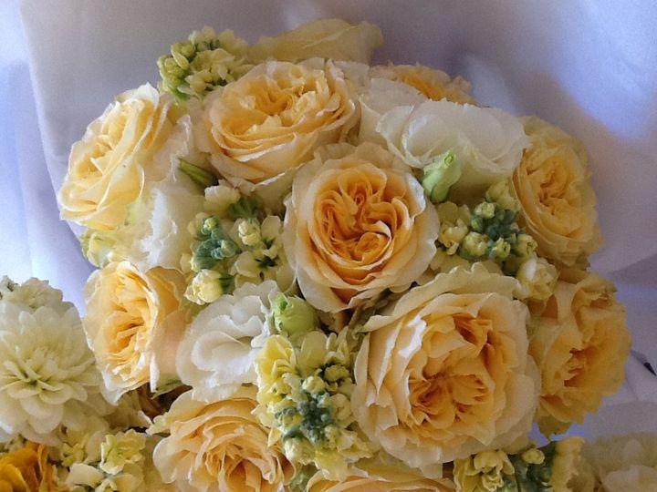 Tmx 1426355613659 Ipad Pictures 879 Woodland, California wedding florist